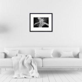 Tirage 24x36 + cadre galerie