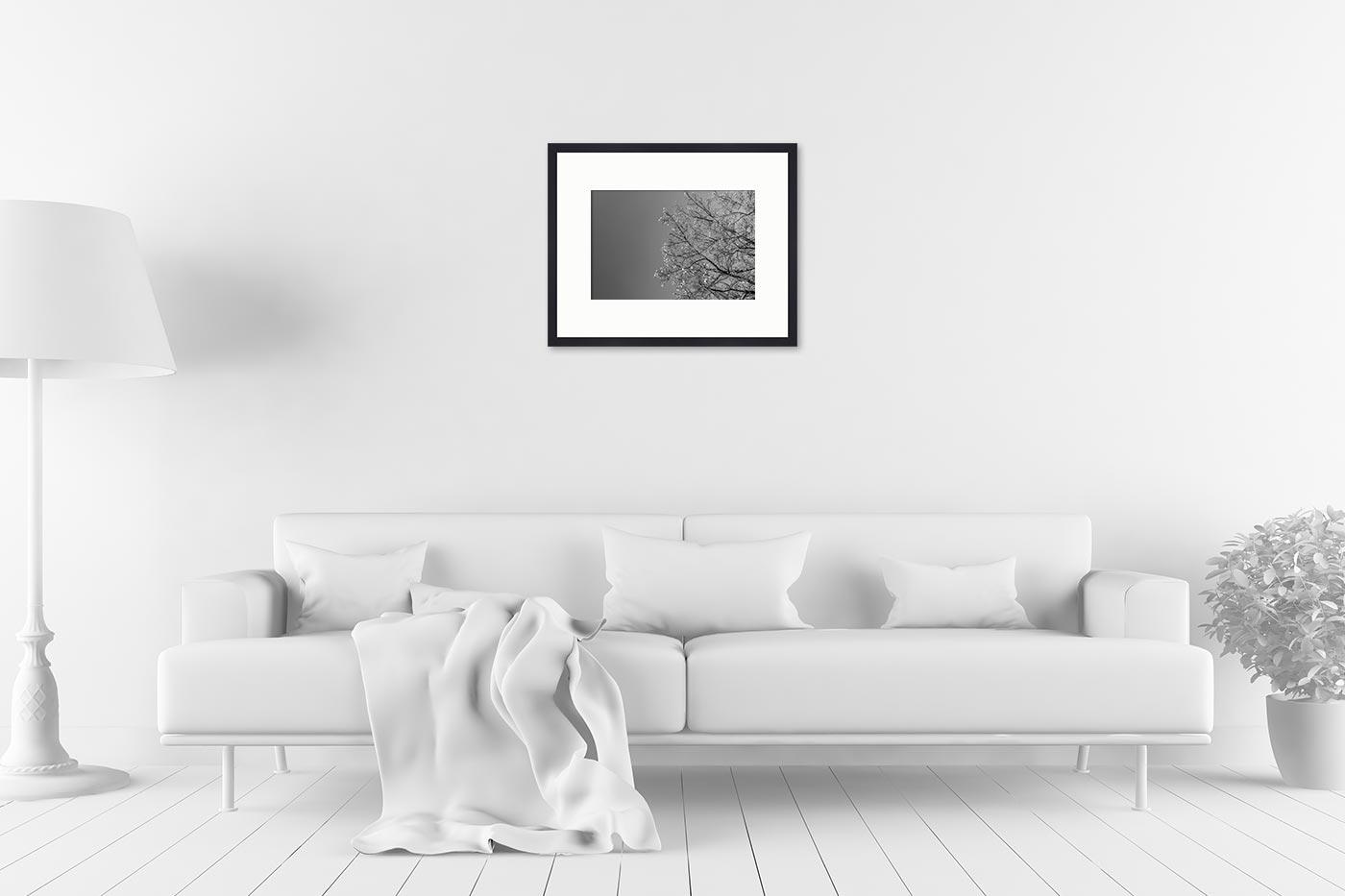 Cadre galerie 40x50 Spring