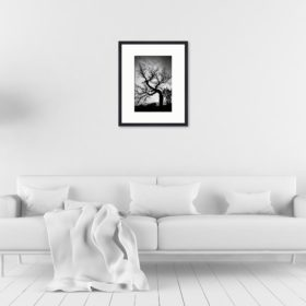 Cadre galerie 40x50 : 390€