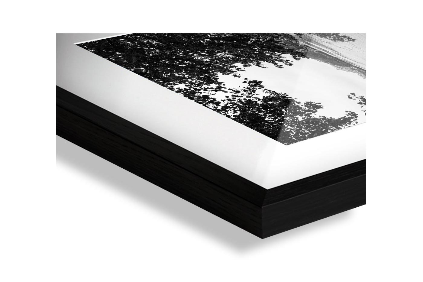 Profil cadre galerie Flooded Paris